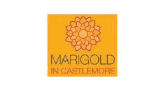 Marigold in Castlemore
